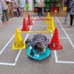 Na dywanie rozstawione są pachołki. Dziecko przejeżdża między nimi na deskorolce.