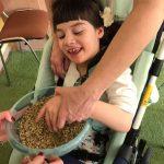 Dziewczynka siedząca na wózku dotyka owsa, które znajduje się w misce przed nią.