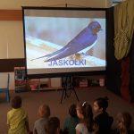 Grupa dzieci siedzących na dywanie i oglądających na ekranie ptaka-jaskółkę..