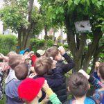 Grupa dzieci przy drzewnie trzyma w ręce rolkę po papierze i przykłada ją do oka. Na drzewie powiesznowy jest obrazek owada.