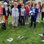 Dzieci stoją w grupie na trawie. Przed nimi rozrzucone są obrazki pająków. Jedno dziecko trzyma w ręce dużą kostkę.
