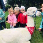 2 dziewczynki i nauczycielka stoja obok alpaki