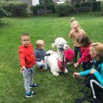 Dzieci, alpaka i Pani trzymająca alpakę w ogrodzie przedszkolnym.