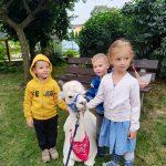 Troje dzieci stojących w ogrodzie przedszkolnym. Pomiędzy nimi leży alpaka.