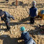 Pięcioro dzieci odkopuje szkielet dinozaura, ukryty w piasku.