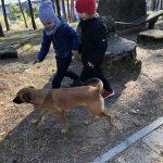 Dwóch chłopców idących na dworze obok psa.